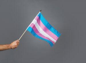 transgenre drapeau